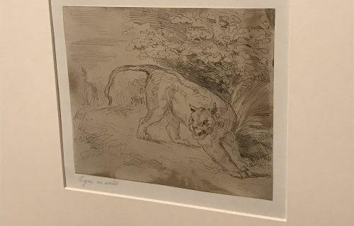 Eugene Delacroix @Hans Kraus