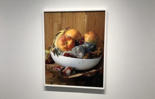 Roe Ethridge, Old Fruit @Gagosian