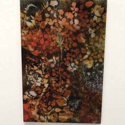 Sam Falls @303 Gallery