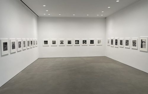 Robert Mapplethorpe @Gladstone