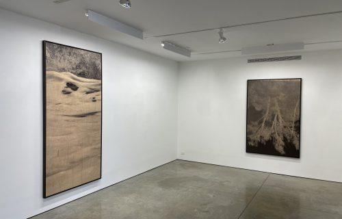 Clifford Ross: Prints on Wood @Ryan Lee