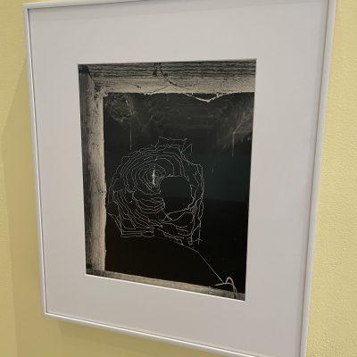 Ilse Bing @MoMA