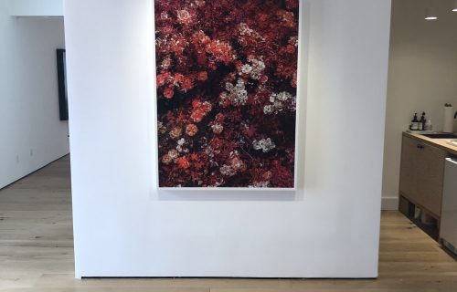 Trevor Paglen: A Thousand Flowers @Pace East Hampton