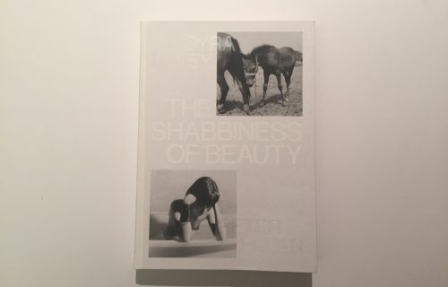 Moyra Davey/Peter Hujar, The Shabbiness of Beauty