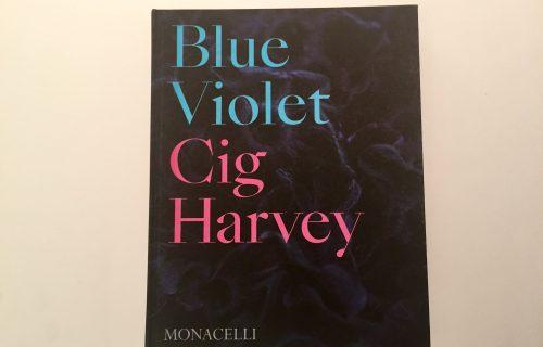 Cig Harvey, Blue Violet