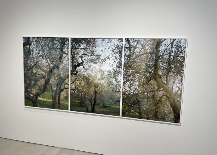 JoAnn Verburg, For Now @Pace