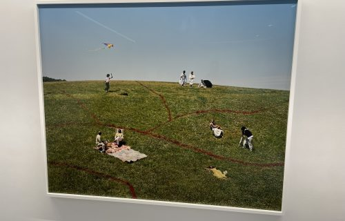 Tyler Mitchell, Dreaming in Real Time @Jack Shainman