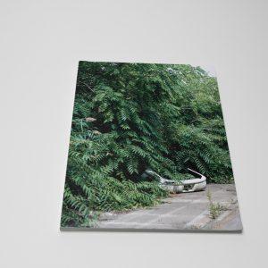 Franziska Klose, Detroit – Field Notes From a Wild City