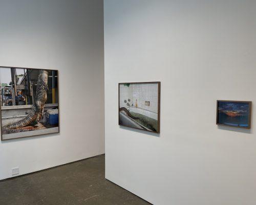 Curran Hatleberg @Higher Pictures Generation